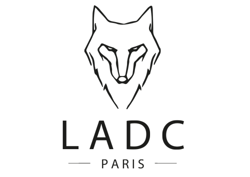 ladc referencement seo agence paris