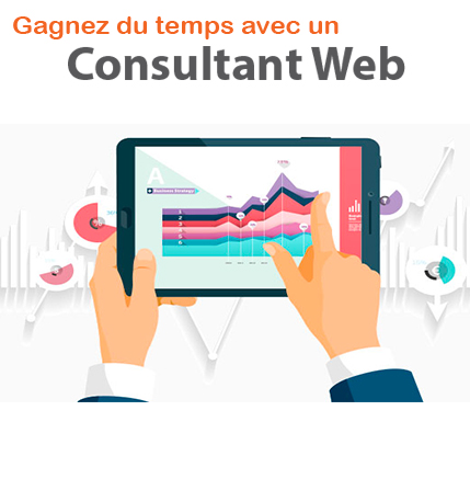 consultant web paris