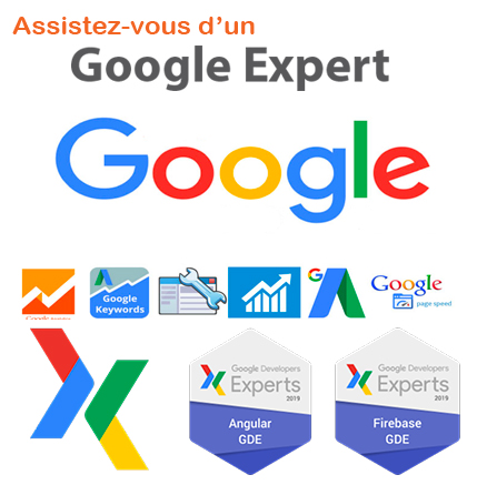 google consultant paris